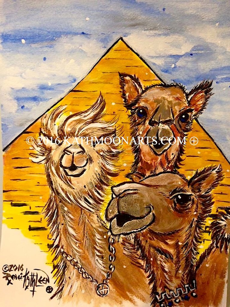 Camel Party