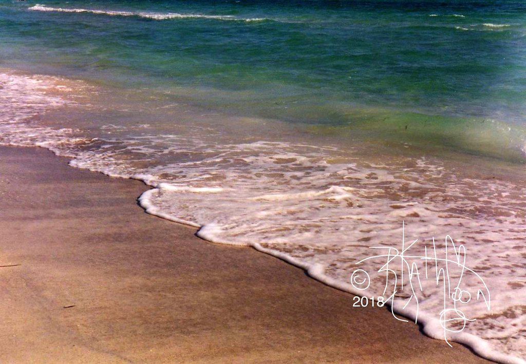 Surf Sarasota